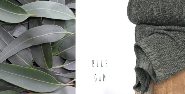 knit inspiration - blue gum knit