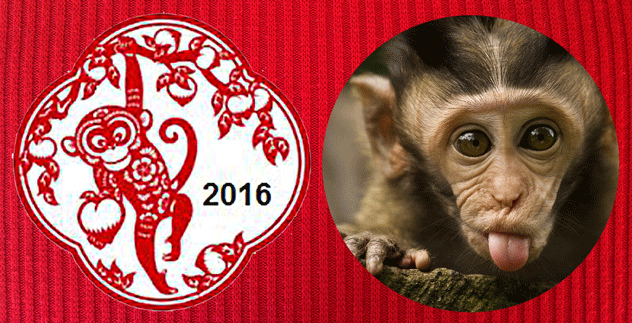 Luna New Year - red fire monkey – 2016