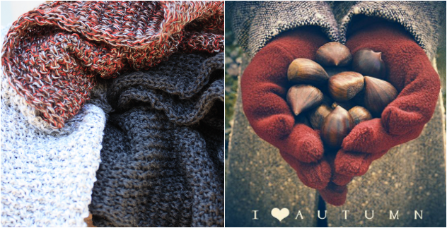 luna loves autumn, textures & tones, figs & chestnuts, apples & pears